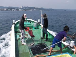 串本カセ釣り組合でマダイの稚魚約2万匹、イシダイの稚魚1500匹を放流しました。早く大きくなってお客様の皆様に釣ってもらいたいです(^^♪  (2) (1024x764)