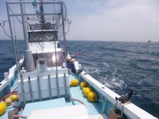 7月8日 船頭 岬沖潮が悪く駄目でした。 (1024x768)