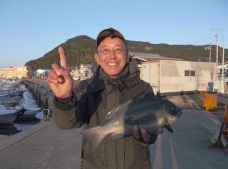 12月20日 大阪 兼崎氏 グレ 40㎝ (センカイ奥)3時30分、執念の1マイです。 (1024x764)