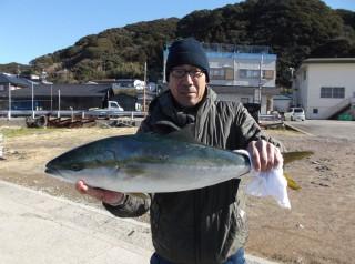 1月10日 奈良 坂本氏 メジロ 75? (センカイカセ) (1024x764)