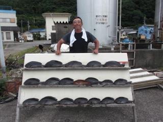 6月10日 大阪 兼崎氏 グレ 35‐50㎝ 19匹 イガミ 35㎝ (センカイ奥) (2)
