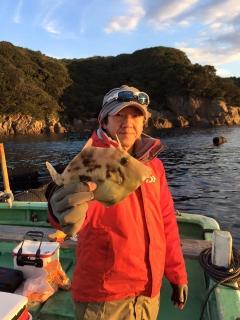 11月28日 大阪 西田氏他 カワハギ 約35匹 (カワギ船)