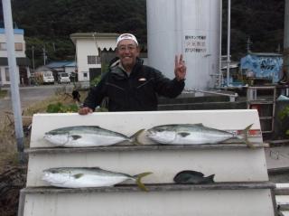 11月12日 大阪 兼崎氏 ブリ 90?前後  3匹 (外の浜カセ) (1)