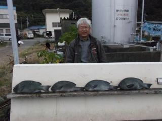 11月22日 大阪 嵐馬氏 40‐45? 4匹 (センカイ奥)