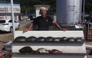 8月19日 大阪 兼崎氏 グレ 30-50㎝ 8匹 ヒラメ 50㎝ アイゴ、イガミ (センカイ奥)