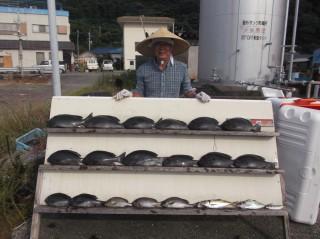 8月2日 泉佐野 立石氏 グレ 35-43㎝ 14匹 中アジ (センカイ奥)
