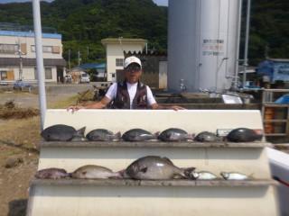 8月9日 大阪 米谷氏 イスズミ 60㎝ グレ 25-45㎝ 6匹 イサギ 45㎝ マハタ 中アジ (赤灯台前カセ)