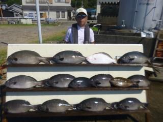 9月1日 大阪 米谷氏 イスズミ 55-65㎝ 11匹 ヒラメ 50㎝ グレ、アイゴ (赤灯台前カセ) (2)