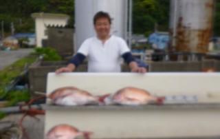 4月22日 大阪 山本氏 タイ 40-60㎝ 3匹 (センカイカセ)大物一枚バラシてしまいました‼